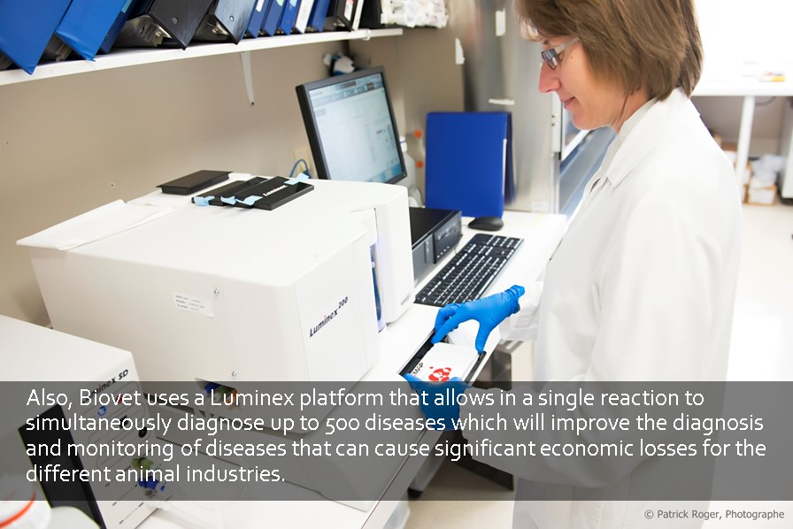 Luminex platform that allows in a single reaction to simultaneously diagnose up to 500 diseases