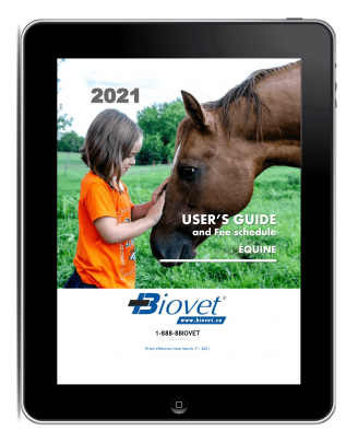 User's Guide - Equine (PDF)
